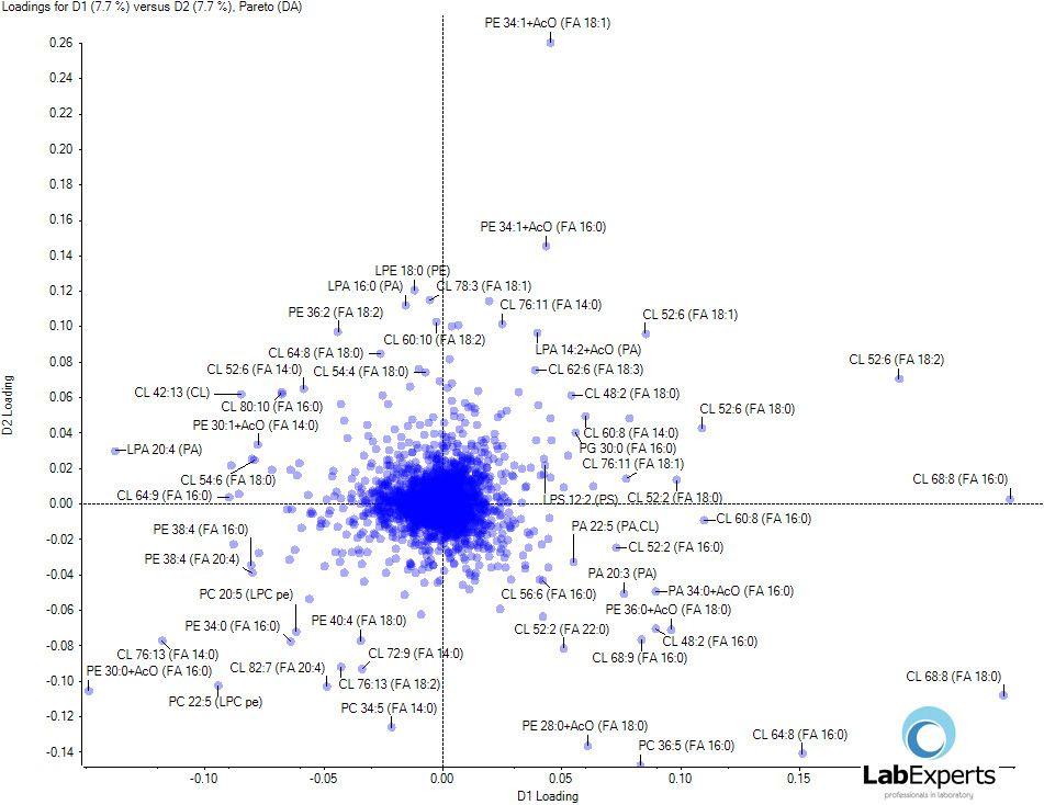 Shotgun lipidomics - Separacja zidentyfikowanych lipidów w przestrzeni PCA.